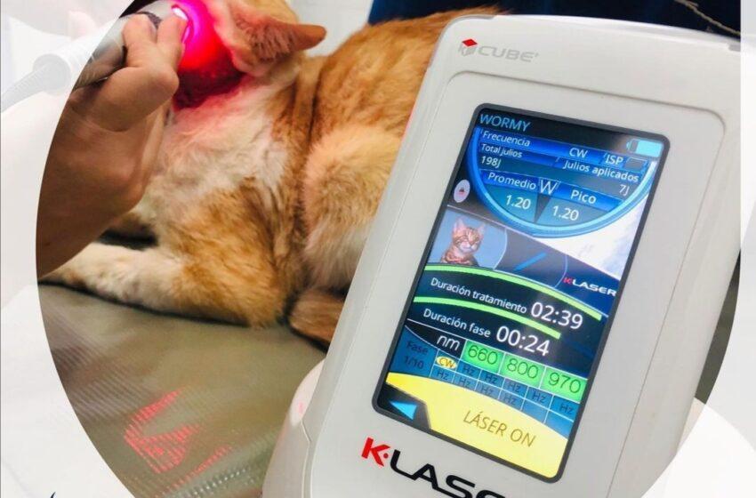Laserterapia en Bucaramanga