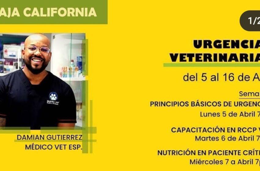 Capacitación en Urgencias Veterinarias