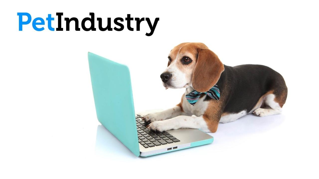 La asociación americana de productos para animales de compañía publica su encuesta nacional a tutores